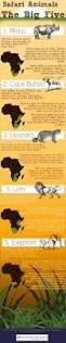 best 25 safari holidays ideas on pinterest safari south africa