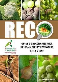 chambre d agriculture cote d or livre guide de reconnaissance des maladies et ravageurs de la vigne