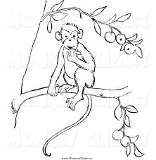 clip art of a black and white monkey eating fruit in a tree by