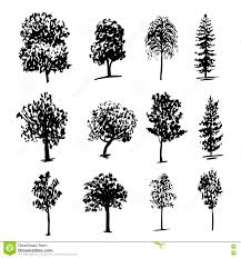 drawing collectiondifferent types of trees ink sketch illustration