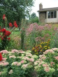 planting the seeds of innovation native plants gardening app blog lawn chair gardener