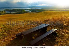 Landscape Timber Bench Beautiful Landscape Wooden Bench Overlooking The Lake And
