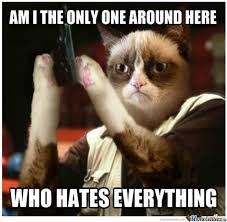 Funny Grumpy Cat Memes - image 470137 grumpy cat know your meme