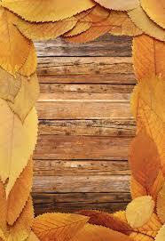 beautiful thanksgiving backdrop stock illustration illustration of