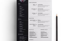 Ux Designer Resume Sample by Sample Resume Template Get Psd U0026 Sketch Resume Templates