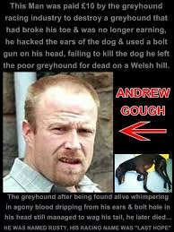 Neglected Wife Meme - abuse of greyhound dogs in greyhound racing