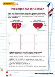pollination and fertilisation by sm mccaffrey teaching resources