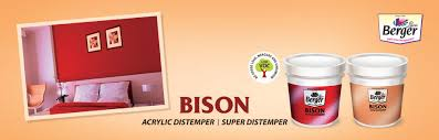 Berger Home Decor Bison Acrylic Distemper Mat Finish Paint Berger Paints