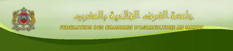 chambre d agriculture 10 fédération des chambres d agriculture au maroc la décision de la