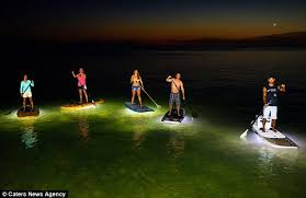 kayak lights for night paddling nocqua 2000 led paddle boards allow enthusiasts to head out at night