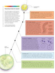 What Is The Most Important Requirement For All Living Things by From Simple To Complex The Scientist Magazine
