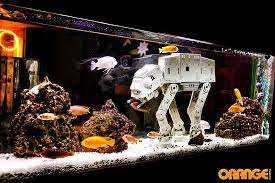 wars fish tank picture of the orange rooms southton