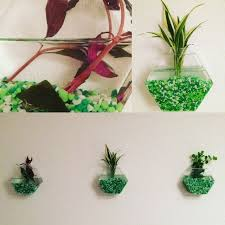 Wall Plant Holders Best 25 Indoor Wall Planters Ideas On Pinterest Herb Wall