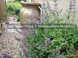 Permaculture Vegetable Garden Layout by Do You Make These 3 Permaculture Mistakes Tenth Acre Farm