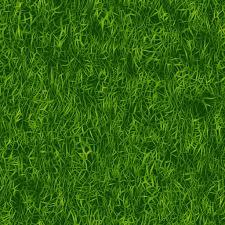 green plants green plants texture