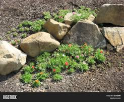 small rock garden image u0026 photo bigstock
