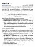 Executive Summary Example For Resume by Executive Summary Resume Writing Resume Sample Writing Resume