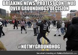 Groundhog Meme - not my groundhog funsubstance