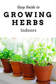 Herbs Indoors by 51 Best Learn More Hydroponics Images On Pinterest Hydroponics