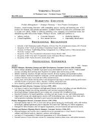 Executive Resume Template Free Free Marketing Resume Templates Resume Template And Professional