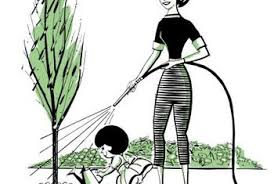how to create a drip system for watering trees home guides sf gate