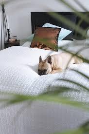 Schlafzimmer Xxl M El Schlafzimmer Mit Ikea Kare Und Frenchie Tirolblog