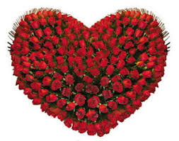 Images Flowers Bangalore Florist Send Flowers To Yeshwanthpur Flowers
