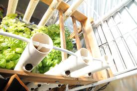 How To Build A Vertical Hydroponic Garden Diy Vertical Aquaponics System Grozinegrozine