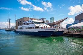 boston whale watch tours u0026 sightseeing boston harbor cruises