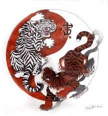tiger ying yang by kyori 83 yin yang yin yang