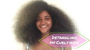 thick coiled hair how to detangle long thick curly hair youtube