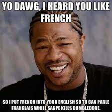 Meme French - yo dawg i heard you like french so i put french into your english