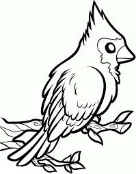 draw red cardinal bird colouring happy colouring