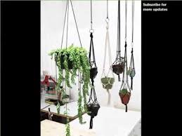 best low light house plants indoor hanging plants low light indoor house or office plants