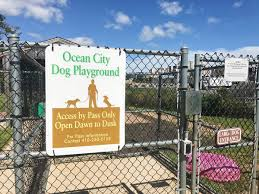 ocean city md halloween 2015 ocean city dog playground oceancity com