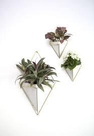 white umbra trigg geometric wall planter set mini indoor garden