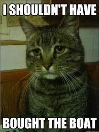 Cat Meme Boat - best of the depressed cat meme smosh