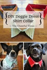 diy doggie dress shirt collar collar dress dress shirts and upcycle