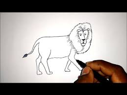 how to draw a simple lion easy drawing tutorial youtube
