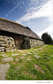 picture of viking long house