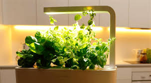 smart herb garden click and grow fuss free urban gardening