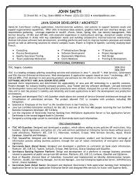 Sample Resume For Net Developer A Sample Of A Essay Paper Llm Thesis Mcgill Essays On Reading Is A