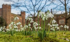 plan your visit to hodsock priory hodsock priory
