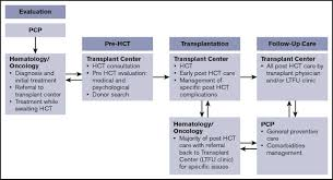 patient centered care coordination in hematopoietic cell