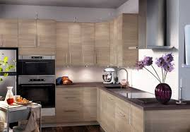 Are These Cabinets From The Martha Stewart Living Line Of Kitchen - Martha stewart kitchen cabinet