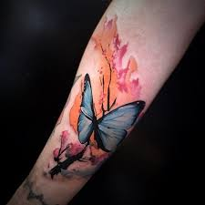 100 amazing butterfly designs butterfly designs