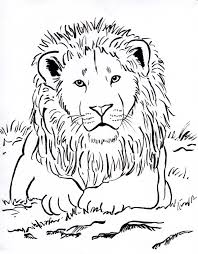 lion face coloring page cecilymae