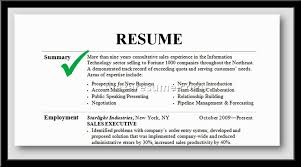 Example Of A Summary For A Resume How To Write A Career Summary On Your Resume Career Summary