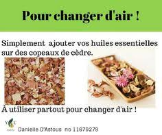 changer de si e air epub antioxidants applications in foods of origin