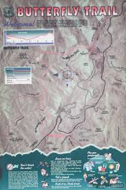 mt lemmon hiking trails map hiking butterfly trail on mount lemmon expeditioners